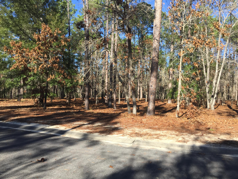 Carolina Plantations Real Estate - MLS Number: 100145242