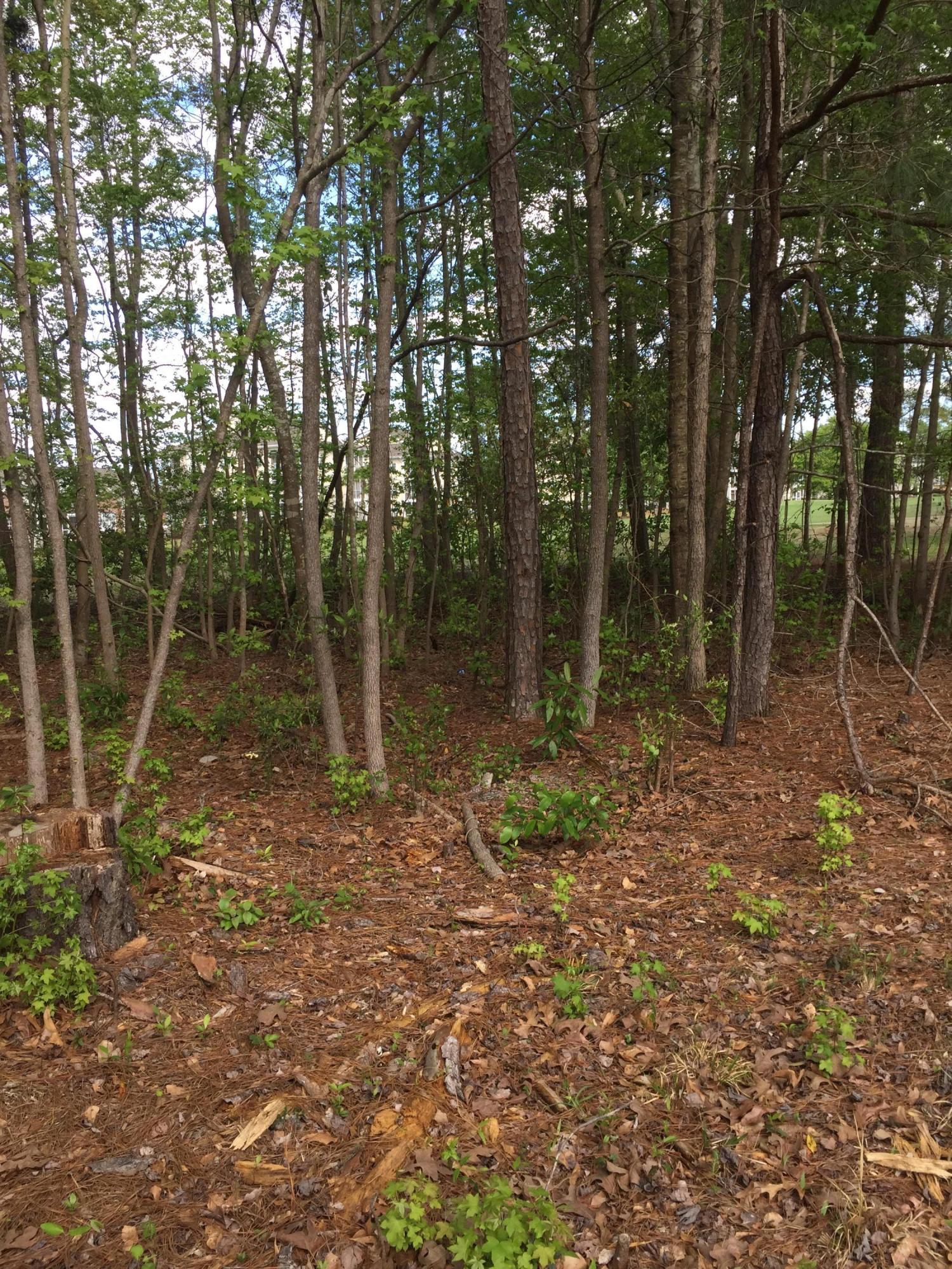 Carolina Plantations Real Estate - MLS Number: 100145303