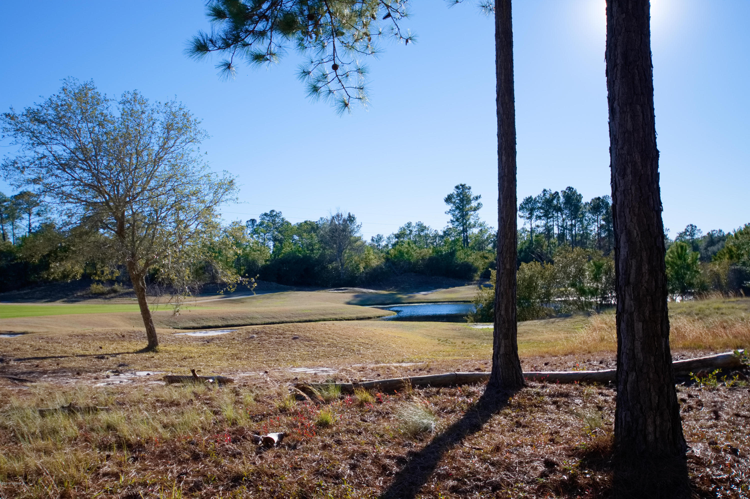Carolina Plantations Real Estate - MLS Number: 100145813