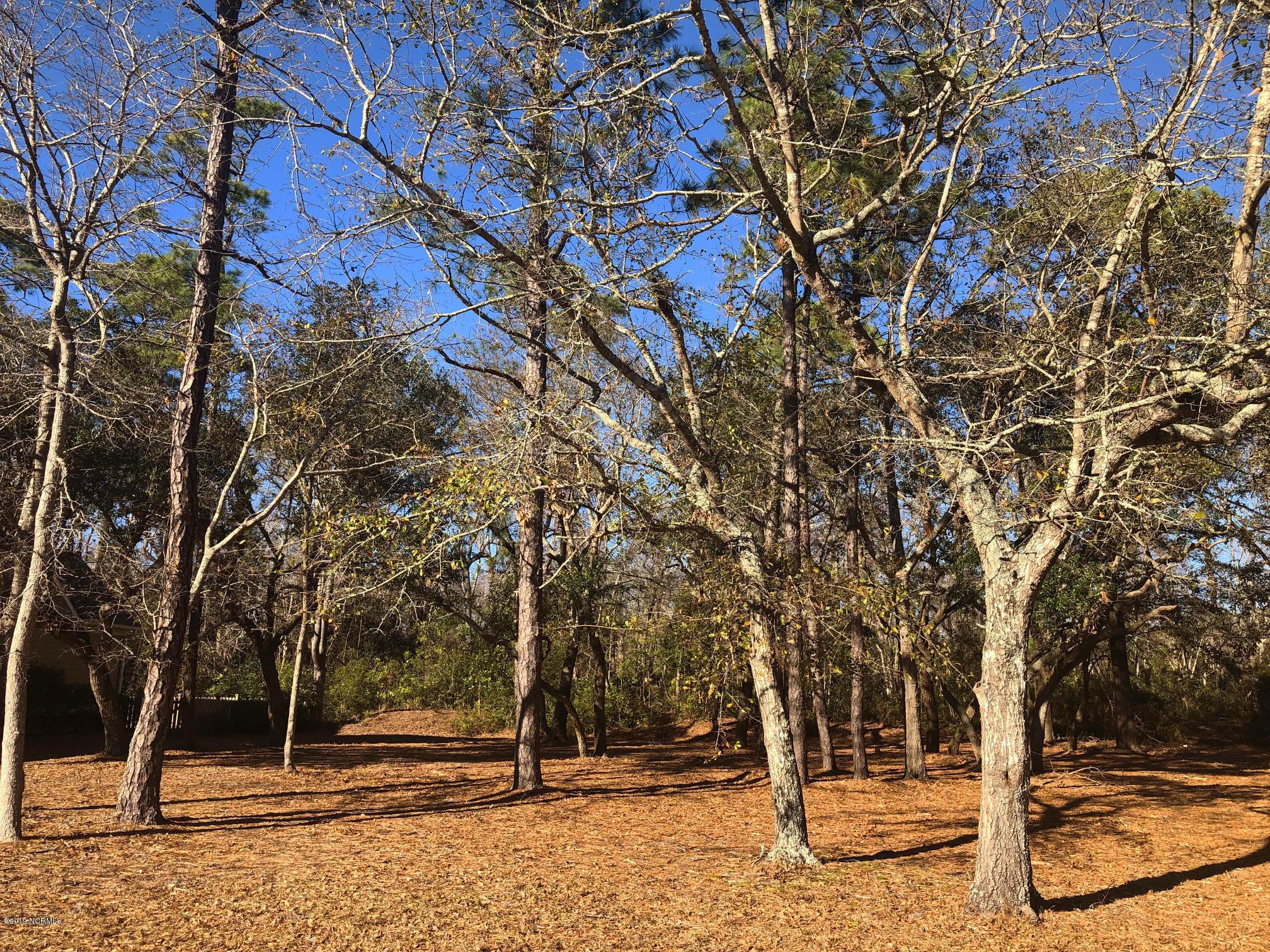 Carolina Plantations Real Estate - MLS Number: 100145627