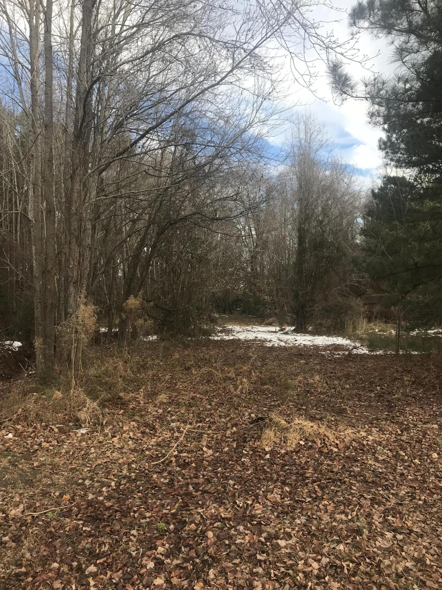 0 Peed Drive, Greenville, North Carolina 27834, ,Residential land,For sale,Peed,100145631