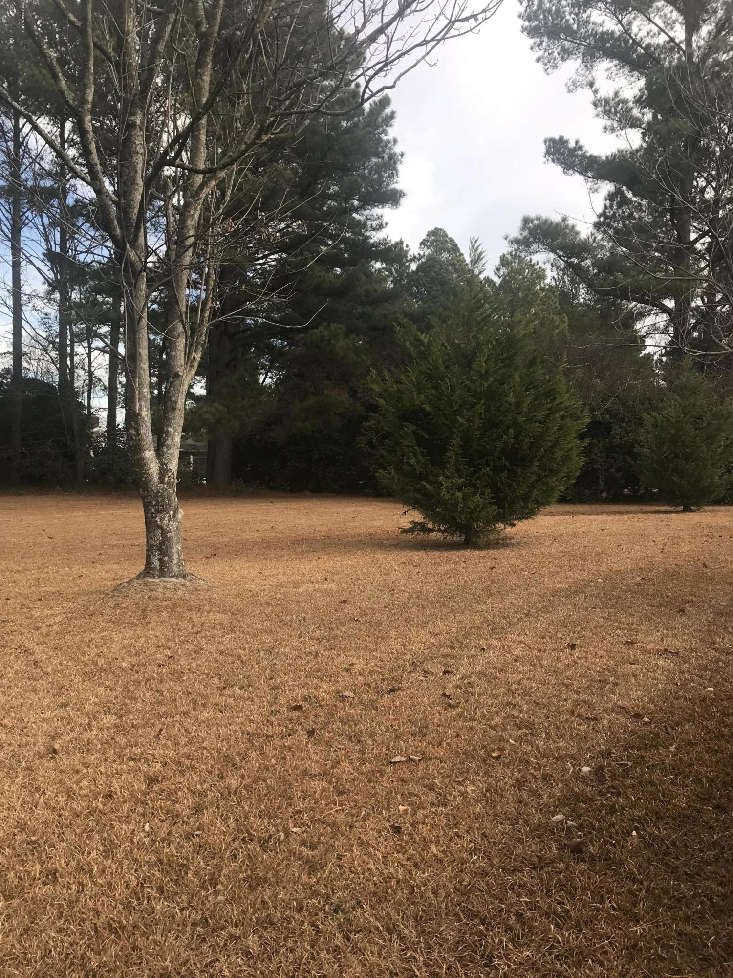 1004 Peed Drive, Greenville, North Carolina 27834, ,Residential land,For sale,Peed,100145635