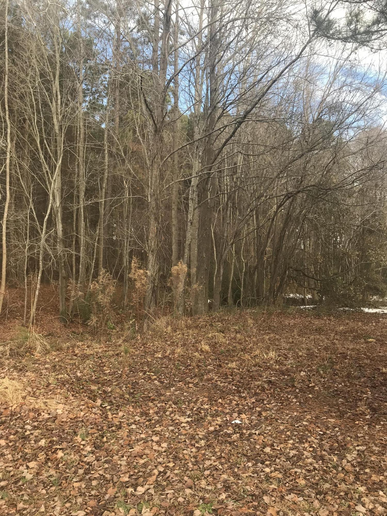 1006 Peed Drive, Greenville, North Carolina 27834, ,Residential land,For sale,Peed,100145638