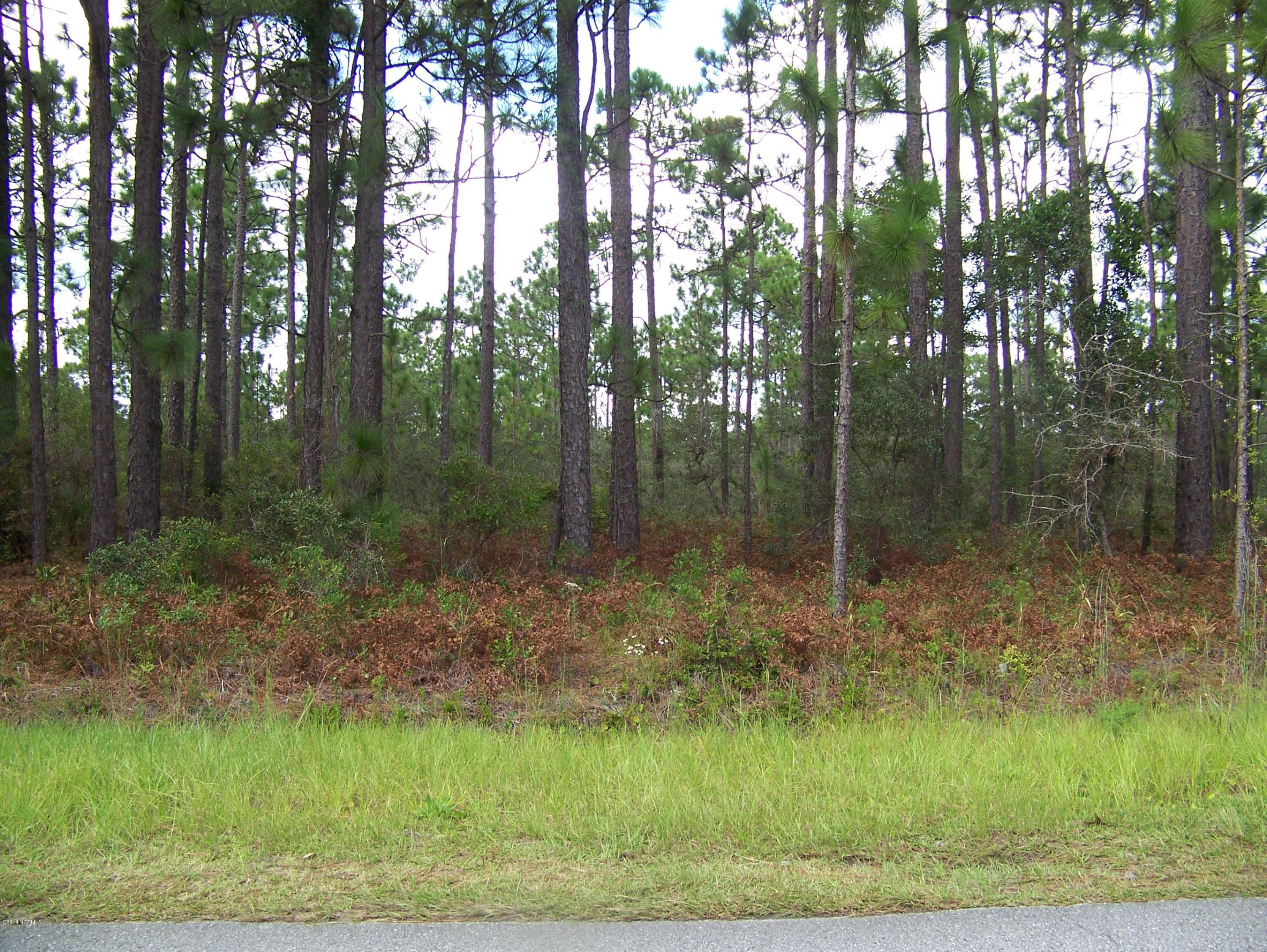 2011 East Boiling Spring Road, Boiling Spring Lakes, North Carolina, ,Residential land,For sale,East Boiling Spring,100145925