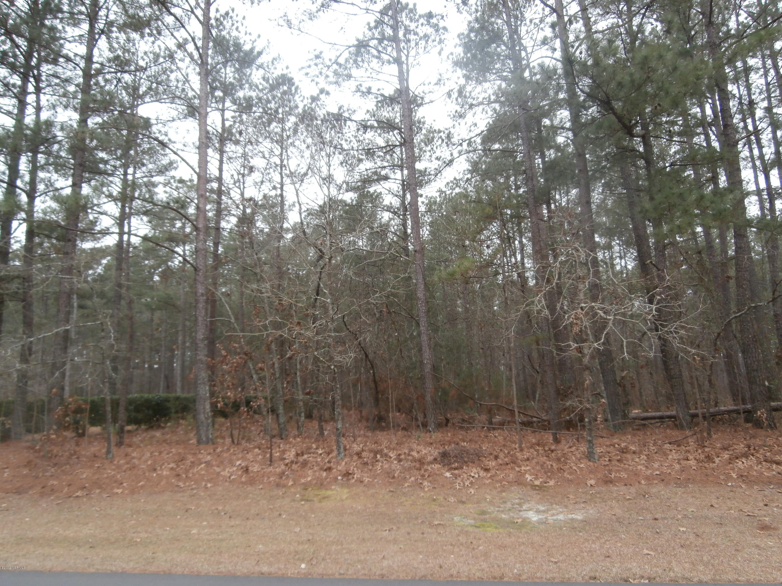 #4 Lakeview Lane- Wagram- North Carolina, ,Residential land,For sale,Lakeview,100145983