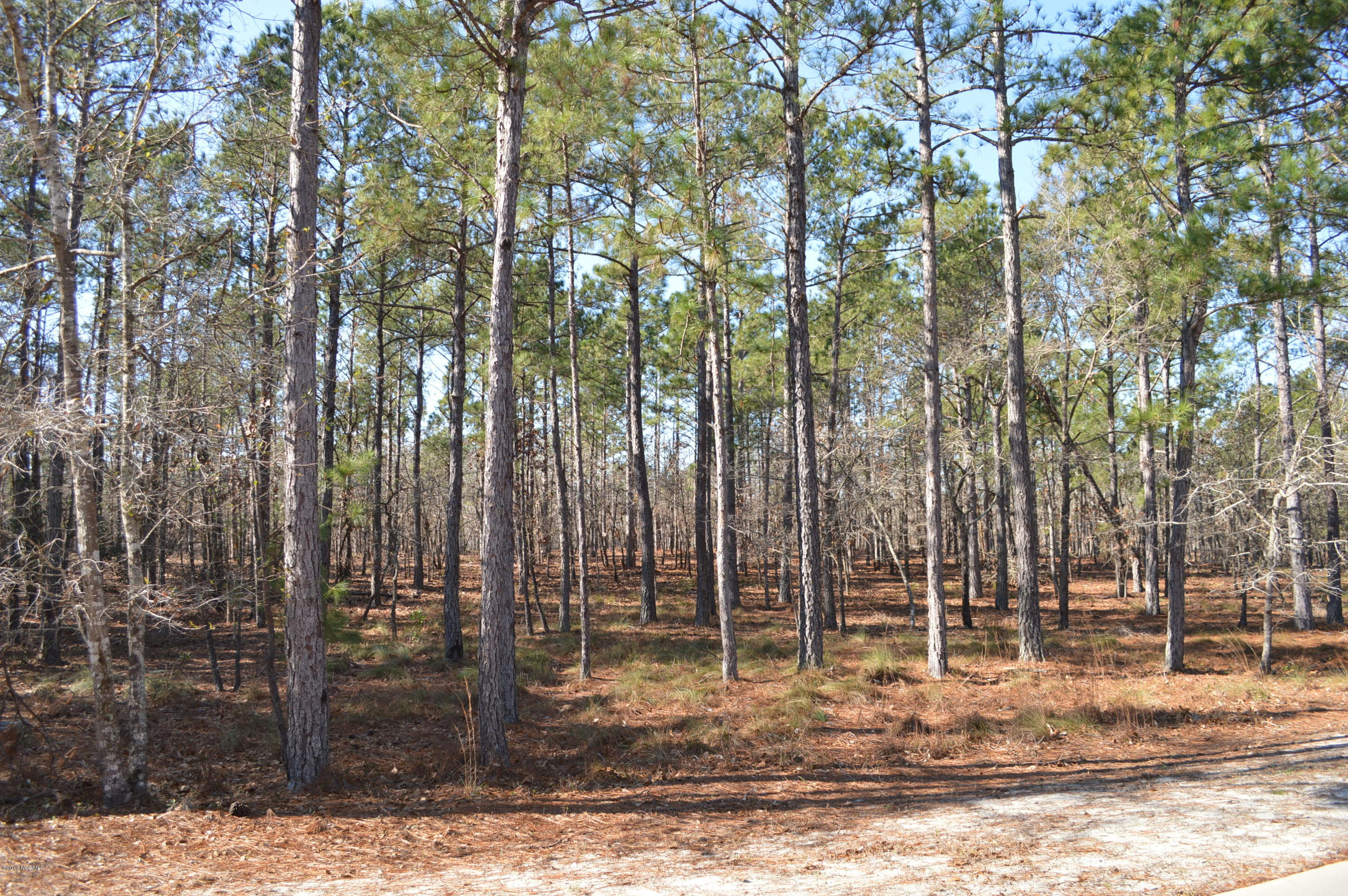 Carolina Plantations Real Estate - MLS Number: 100146031