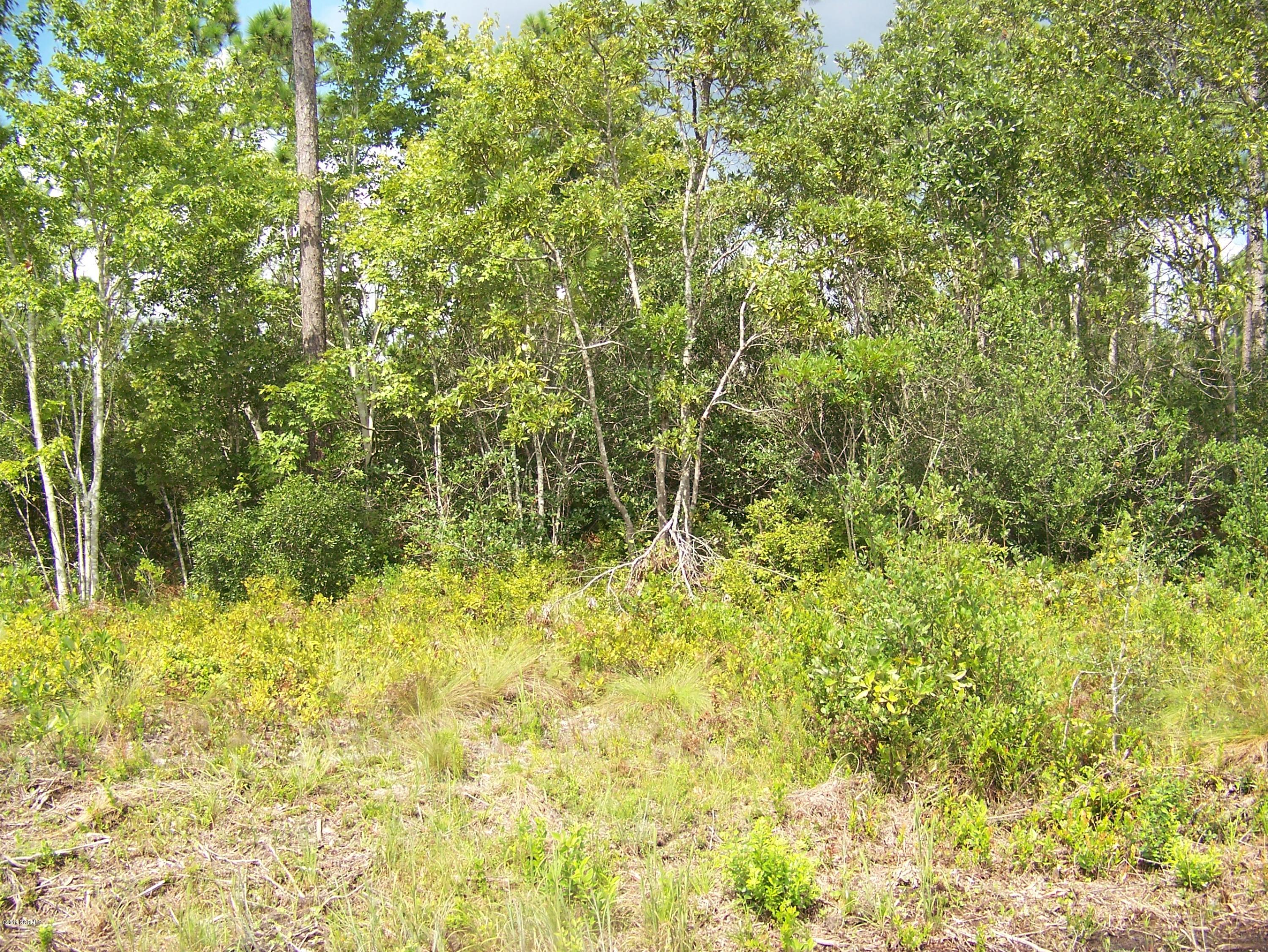 720 Palmer Drive, Boiling Spring Lakes, North Carolina 28461, ,Residential land,For sale,Palmer,100146064