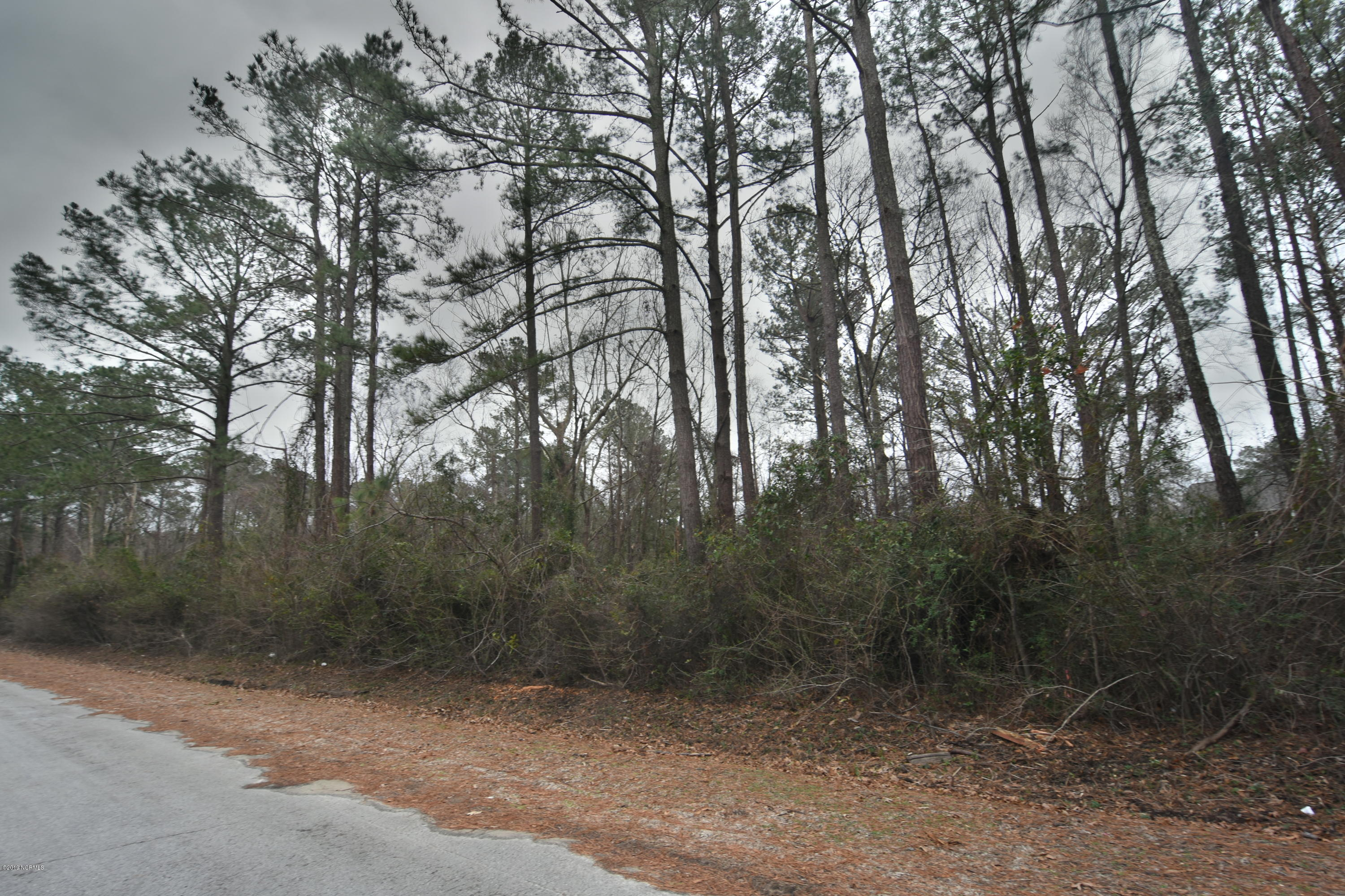 0 Trent Acres Drive, Pollocksville, North Carolina 28573, ,Residential land,For sale,Trent Acres,100146120