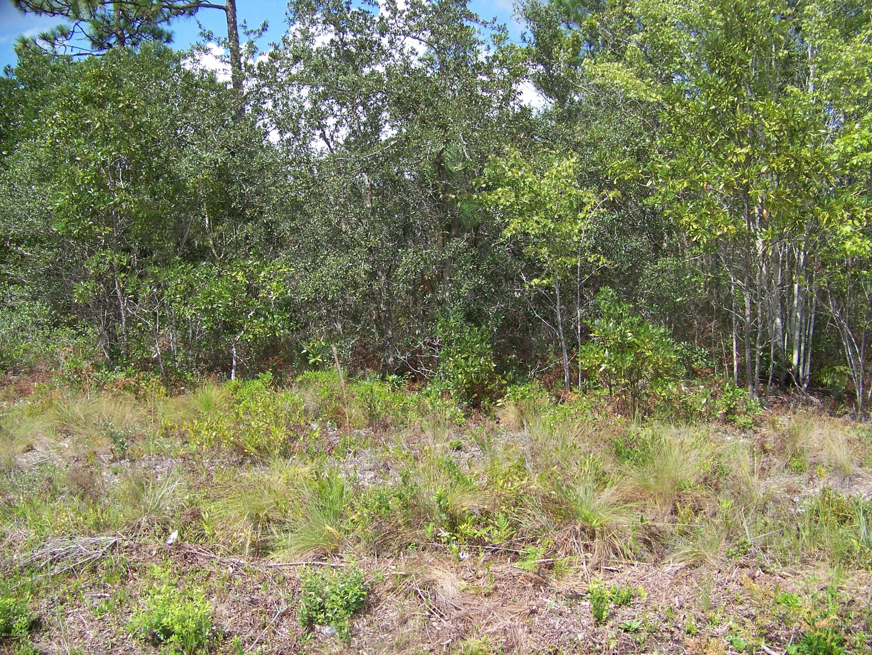 583 E Boiling Spring Road, Boiling Spring Lakes, North Carolina, ,Residential land,For sale,E Boiling Spring,100146160