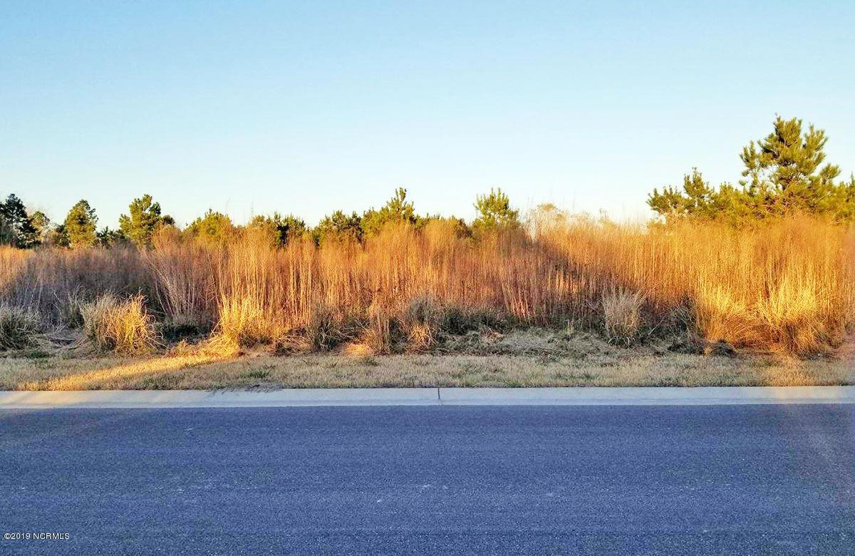 Carolina Plantations Real Estate - MLS Number: 100146633