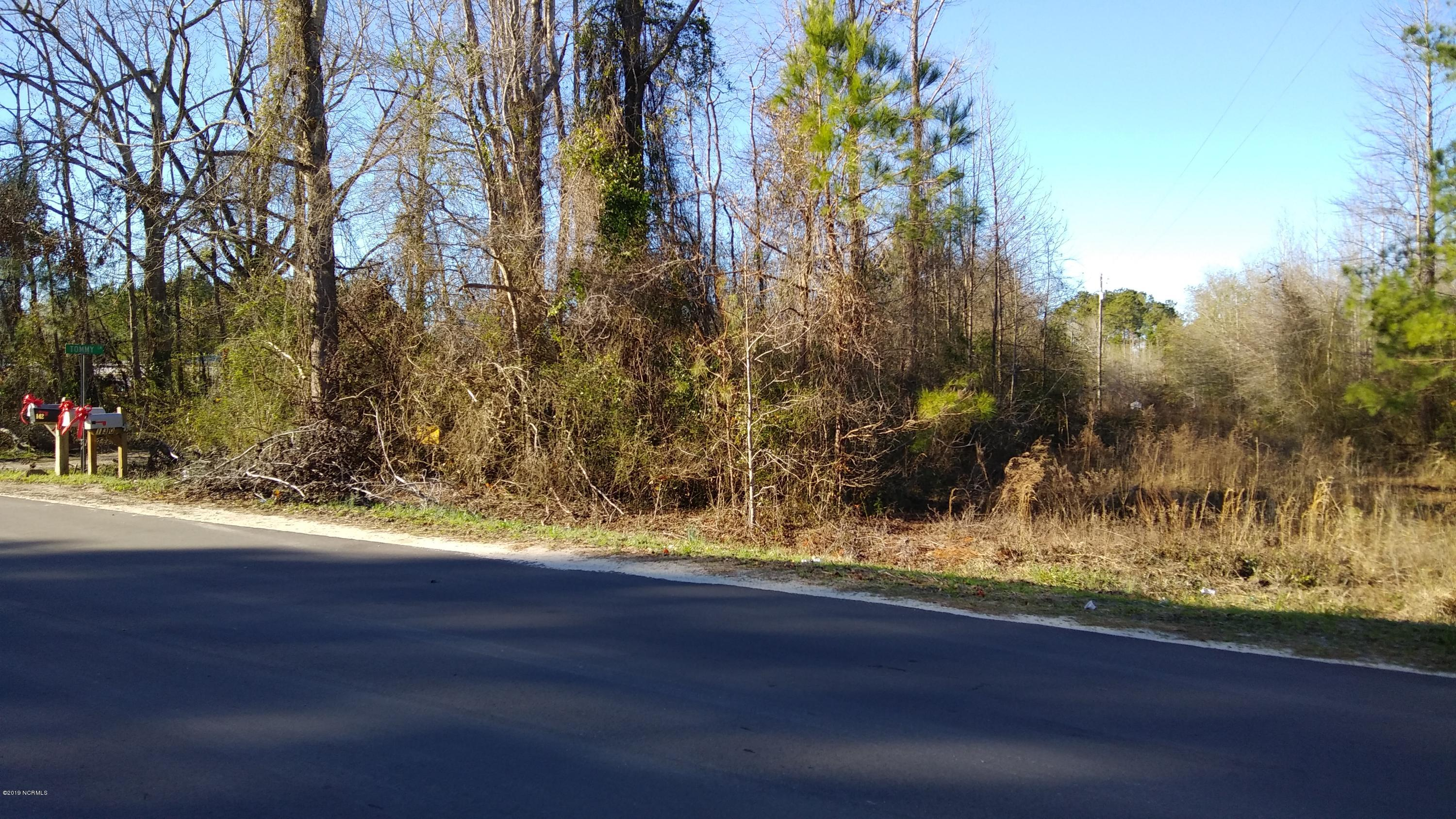 Lot 28 Big Four Road, Currie, North Carolina 28435, ,Residential land,For sale,Big Four,100146702