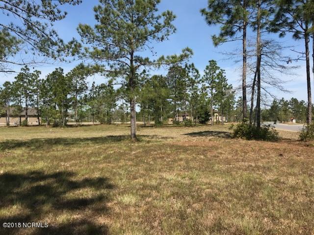 Carolina Plantations Real Estate - MLS Number: 100147322