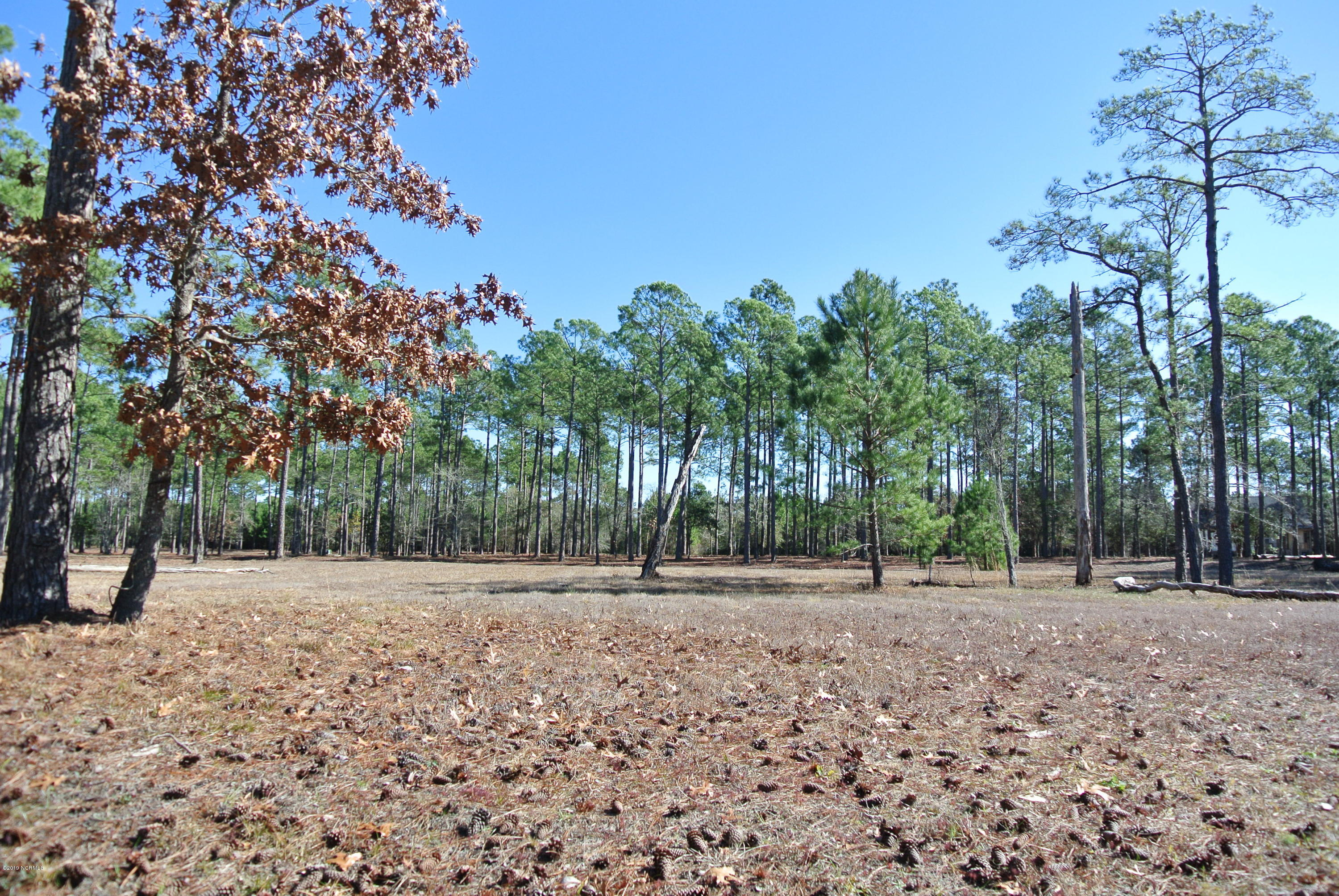 Carolina Plantations Real Estate - MLS Number: 100147411