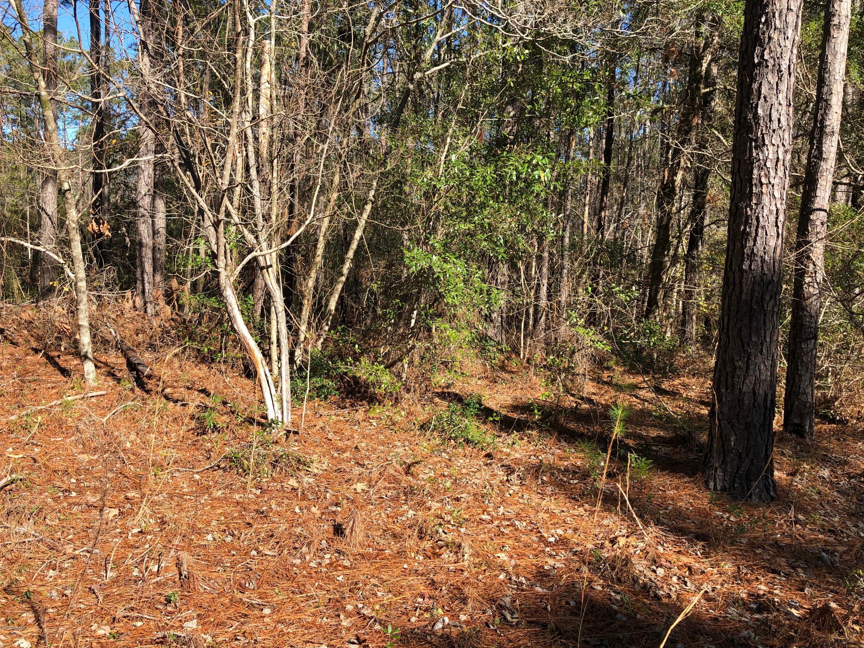 Carolina Plantations Real Estate - MLS Number: 100147479