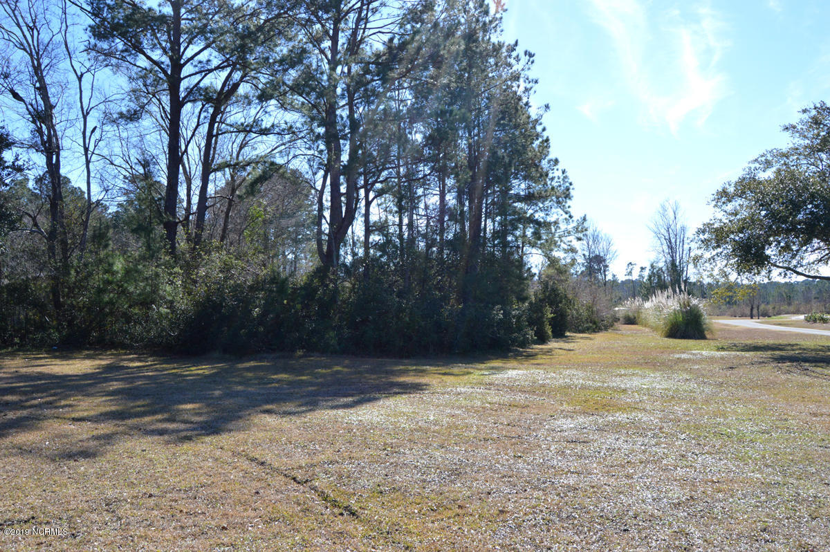 Carolina Plantations Real Estate - MLS Number: 100147511
