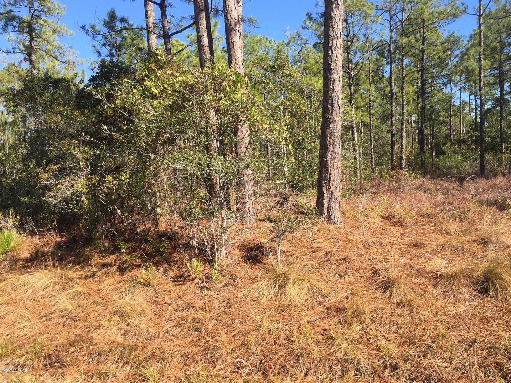 15 Darnell Road, Southport, North Carolina, ,Residential land,For sale,Darnell,100147638