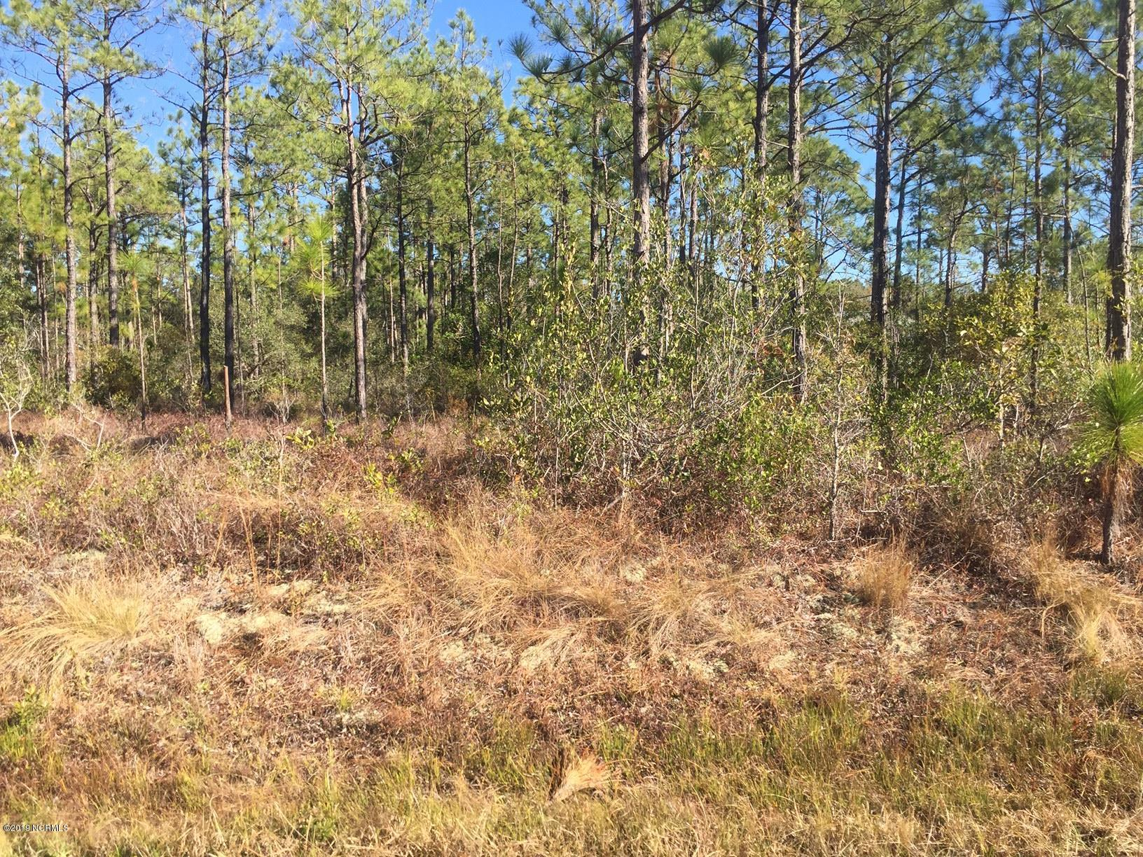 Carolina Plantations Real Estate - MLS Number: 100147640