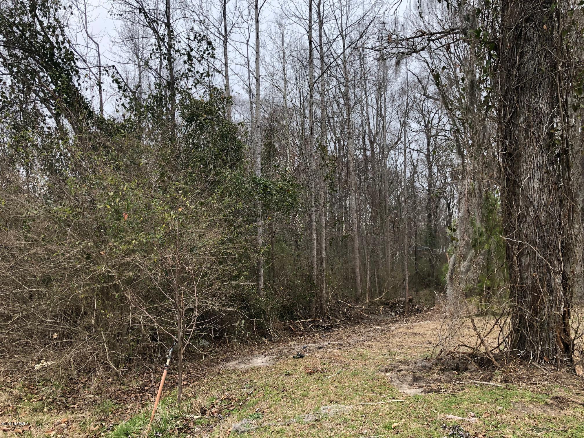 2020 Autumn Drive, Kinston, North Carolina 28501, ,Residential land,For sale,Autumn,100147910