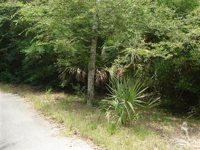 Carolina Plantations Real Estate - MLS Number: 100148235