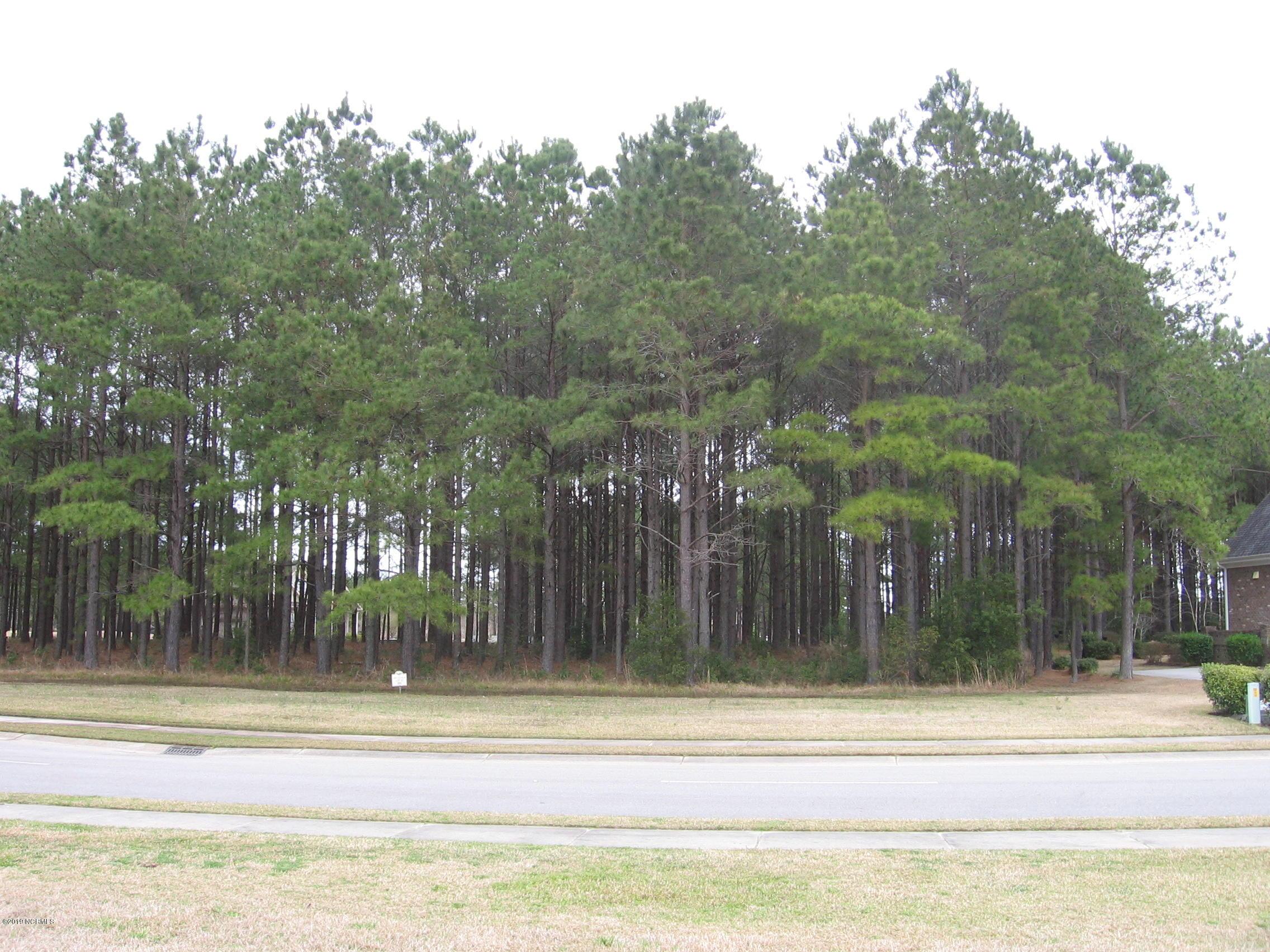 Carolina Plantations Real Estate - MLS Number: 100148628