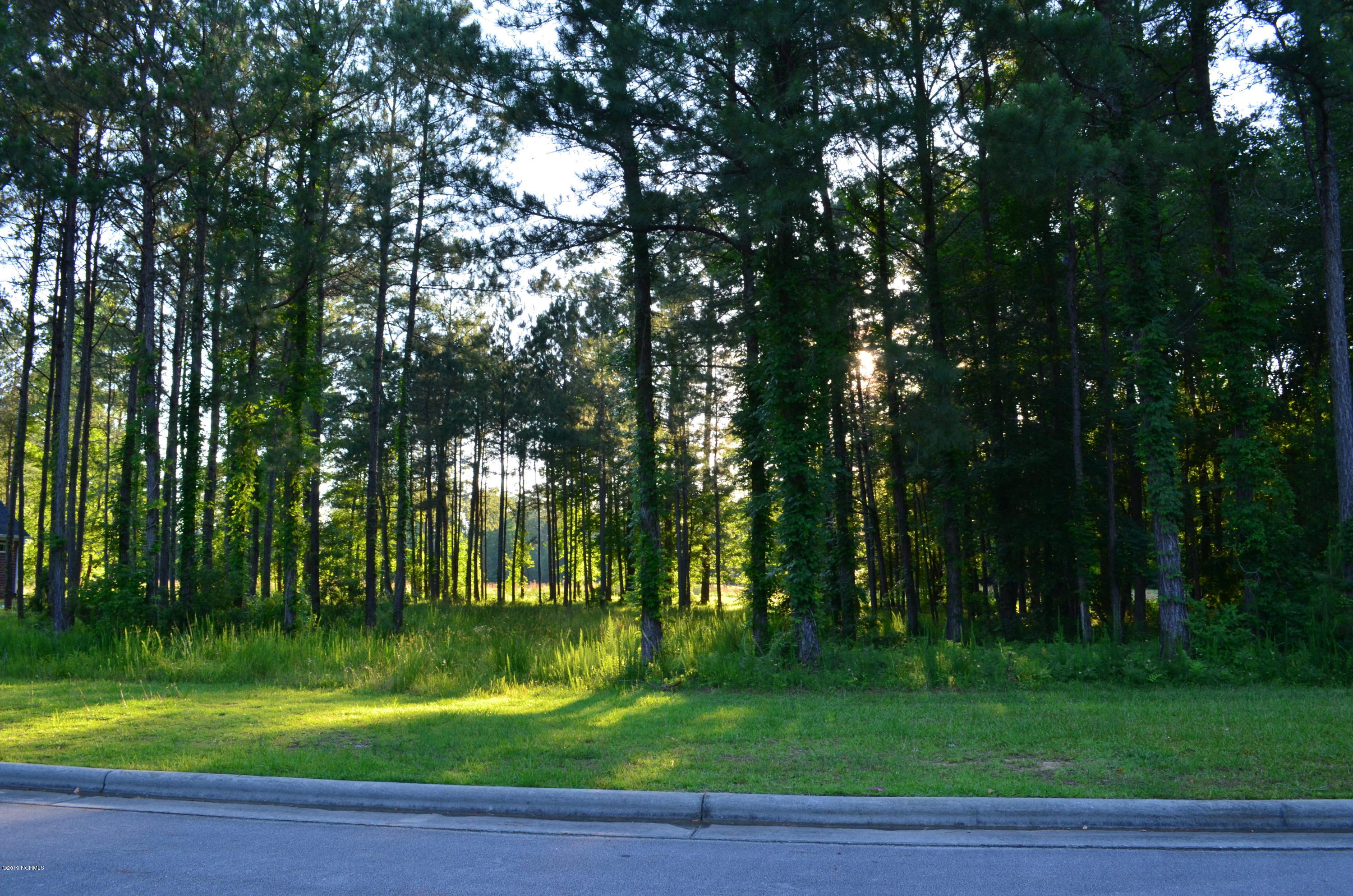 3723 Viridian Trace, New Bern, North Carolina 28562, ,Residential land,For sale,Viridian,100148836