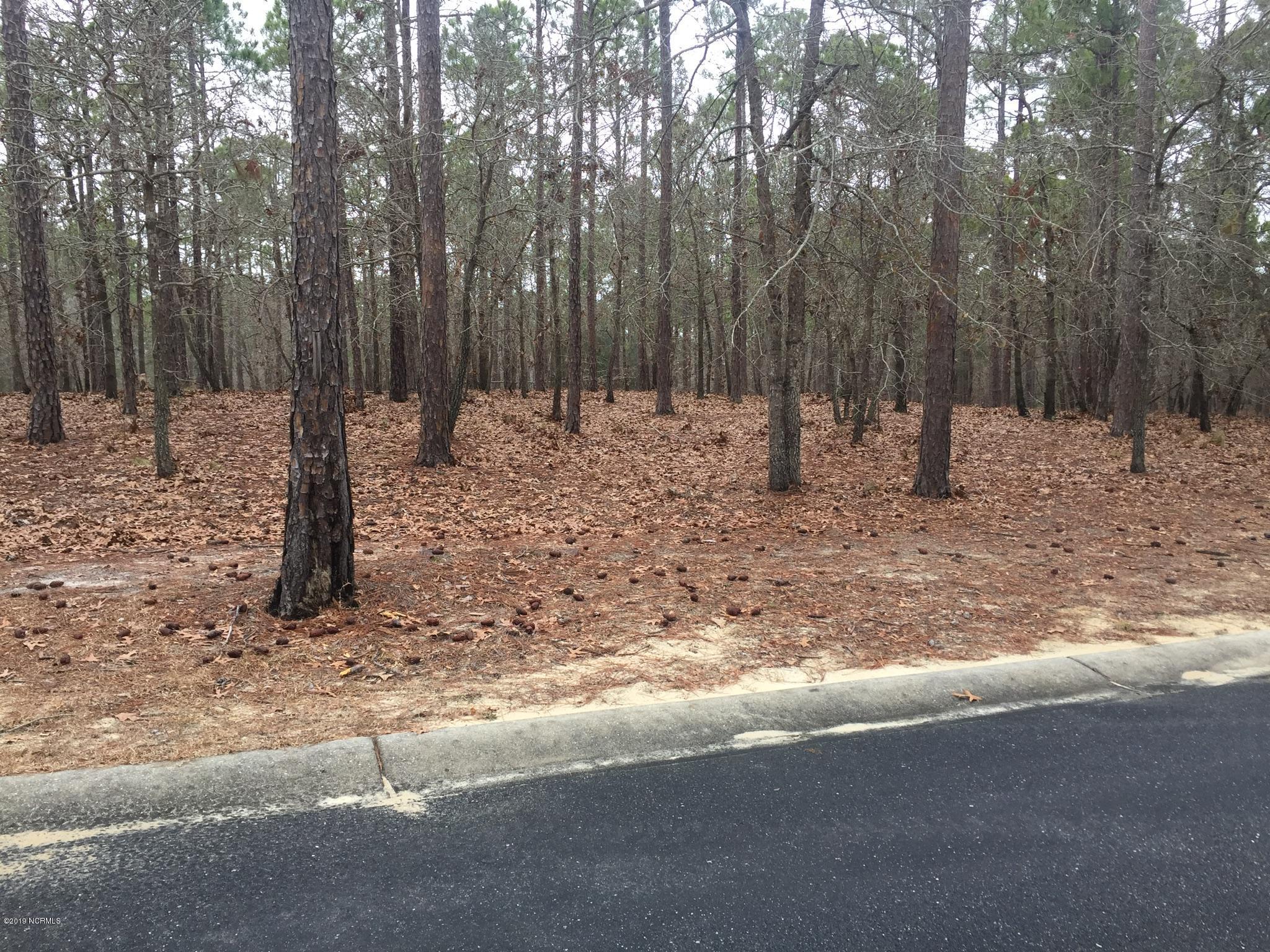 Carolina Plantations Real Estate - MLS Number: 100154489