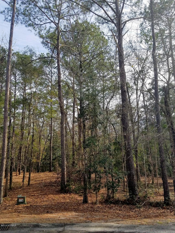 Carolina Plantations Real Estate - MLS Number: 100149009