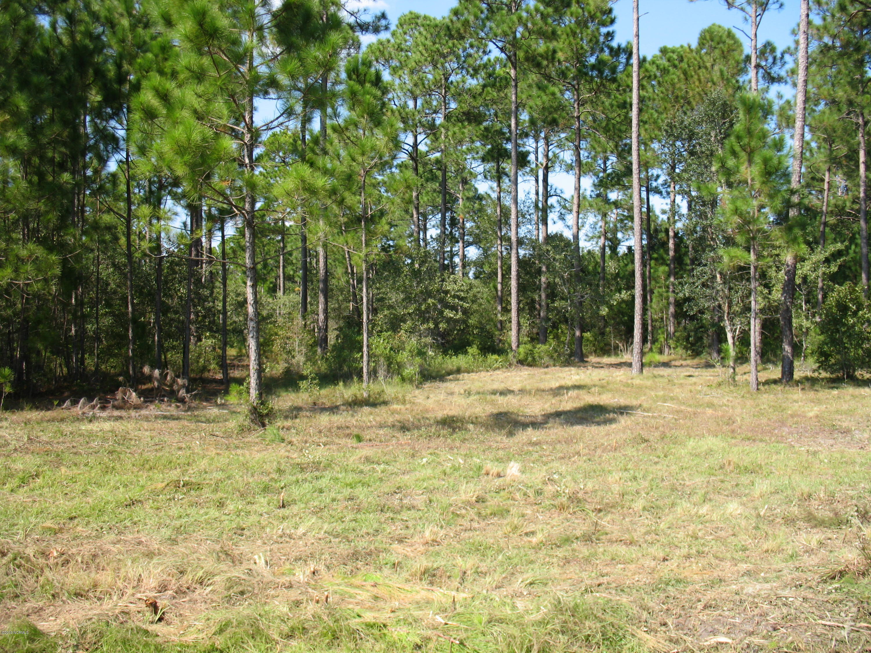 Carolina Plantations Real Estate - MLS Number: 100149051