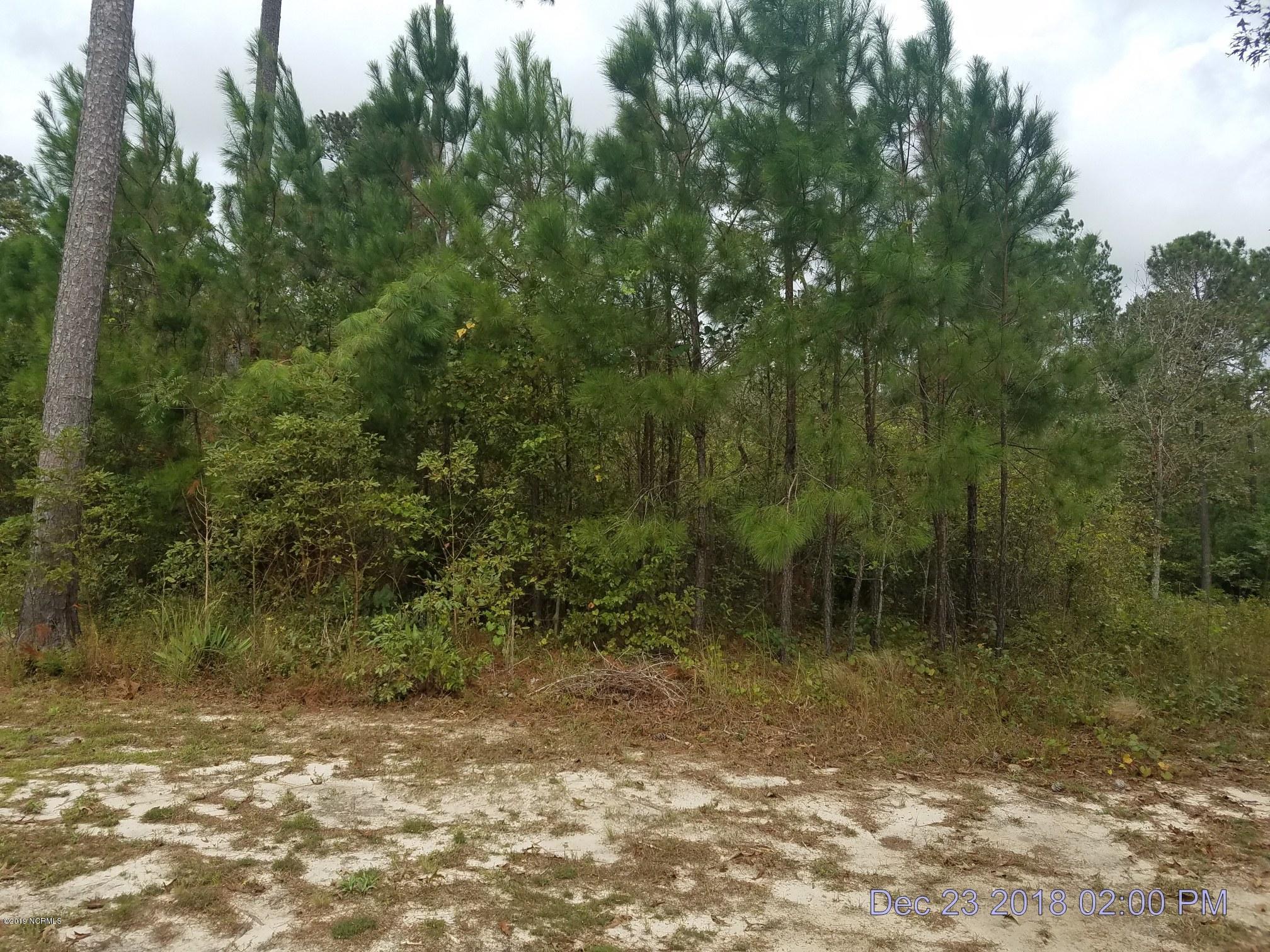 3776 Silver Melon Road, Leland, North Carolina, ,Residential land,For sale,Silver Melon,100149156