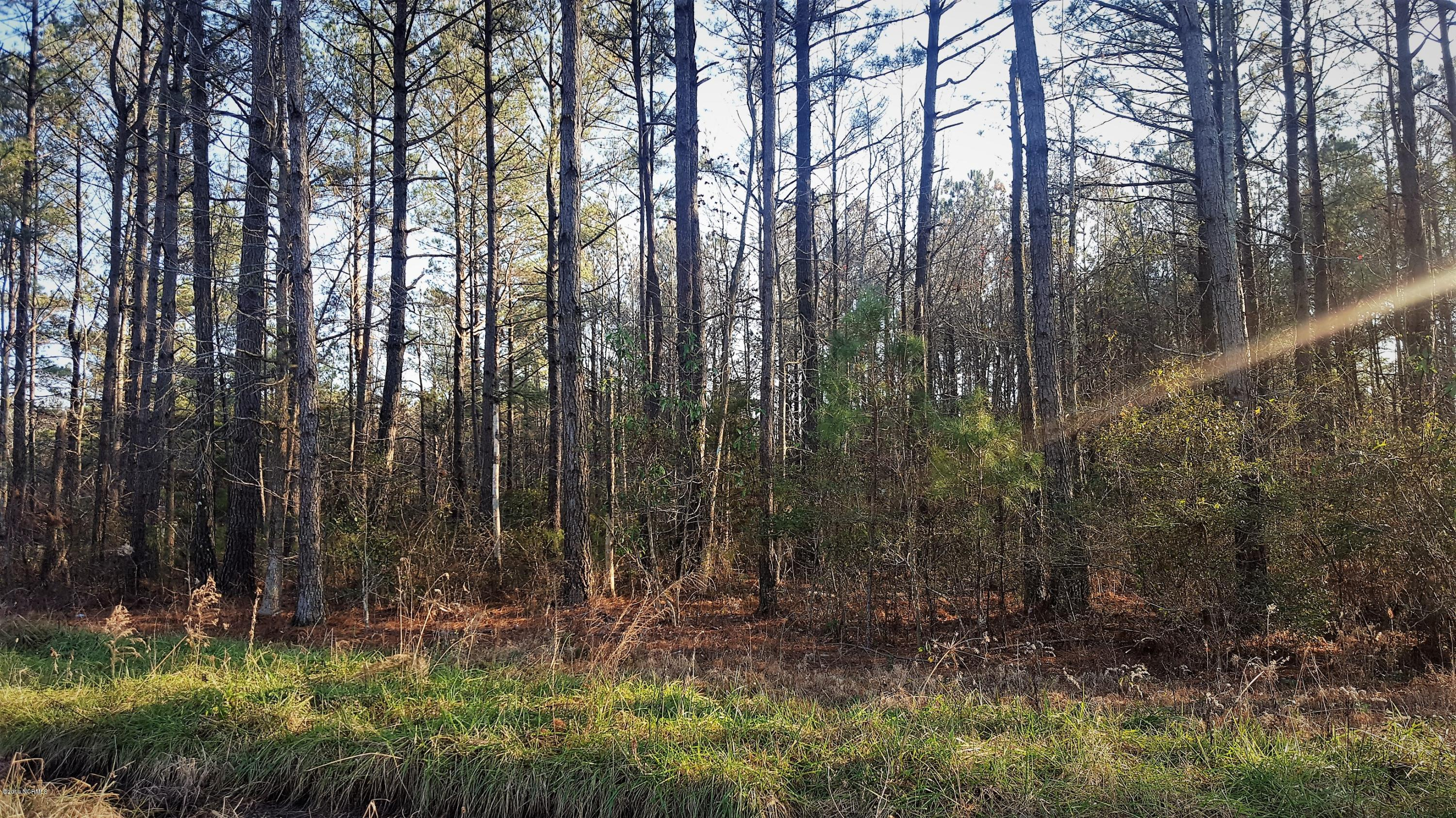 Lot 25 Kel Ash Road, Rocky Point, North Carolina 28457, ,Residential land,For sale,Kel Ash,100149452