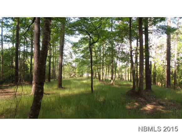 1173 Old Mill Road, Oriental, North Carolina 28571, ,Residential land,For sale,Old Mill,100149832