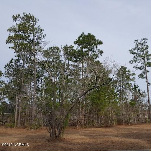 1162 Sabel Loop, Bolivia, North Carolina 28422, ,Residential land,For sale,Sabel,100150200