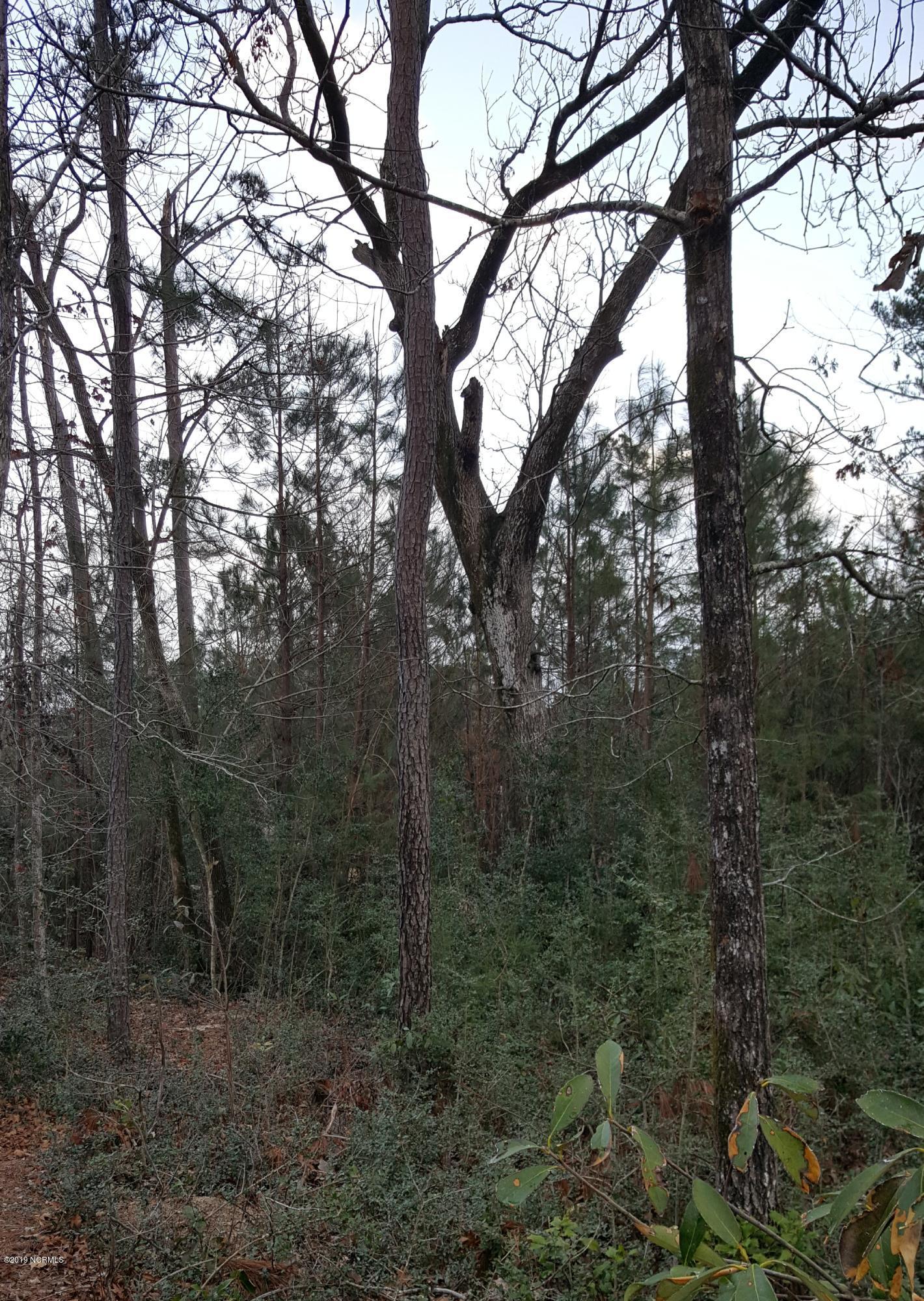 Carolina Plantations Real Estate - MLS Number: 100150196