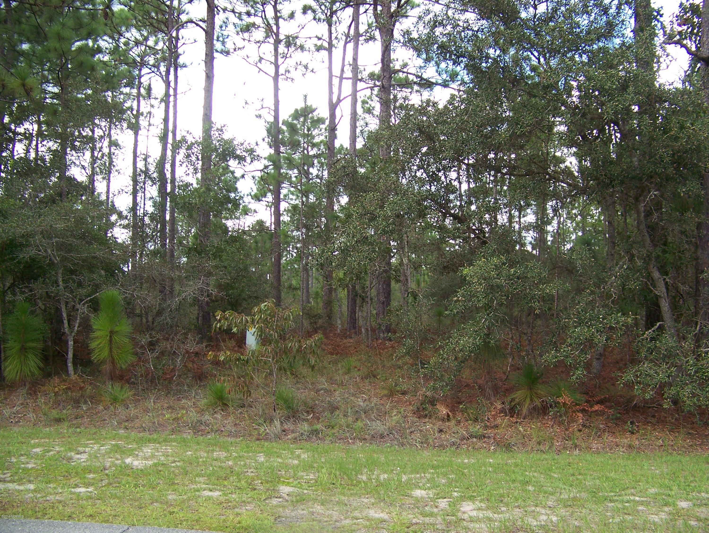 Carolina Plantations Real Estate - MLS Number: 100150541