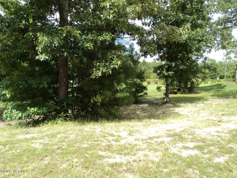 Carolina Plantations Real Estate - MLS Number: 100150687