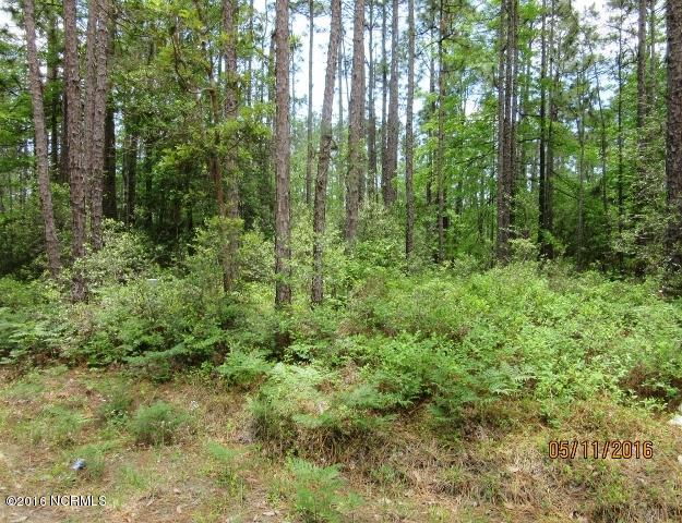 Carolina Plantations Real Estate - MLS Number: 100150881