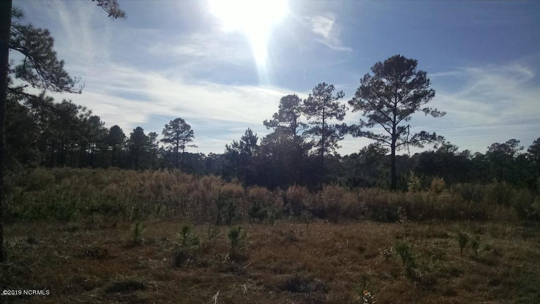 7445 Donegal Circle- Sunset Beach- North Carolina, ,Residential land,For sale,Donegal,100151172