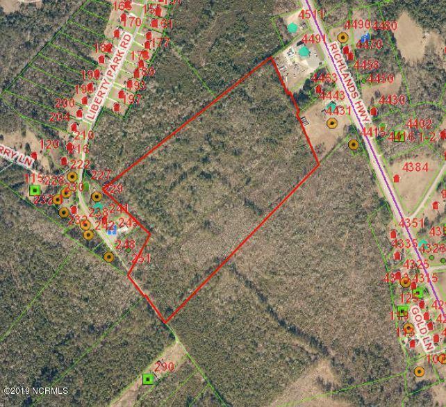 000 Richlands Highway, Jacksonville, North Carolina 28540, ,For sale,Richlands,100151539
