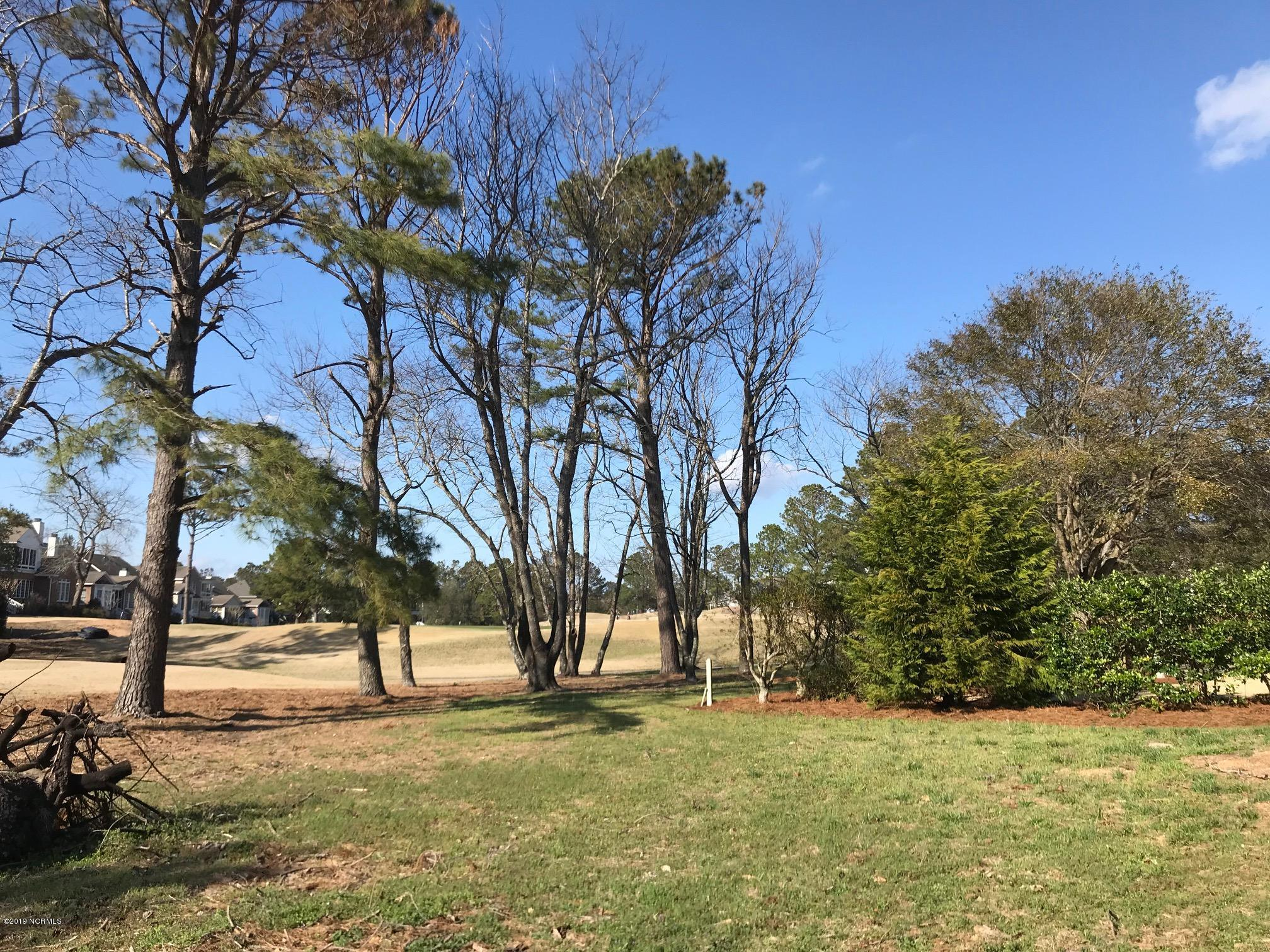 422 White Columns Way, Wilmington, North Carolina 28411, ,Residential land,For sale,White Columns,100151552