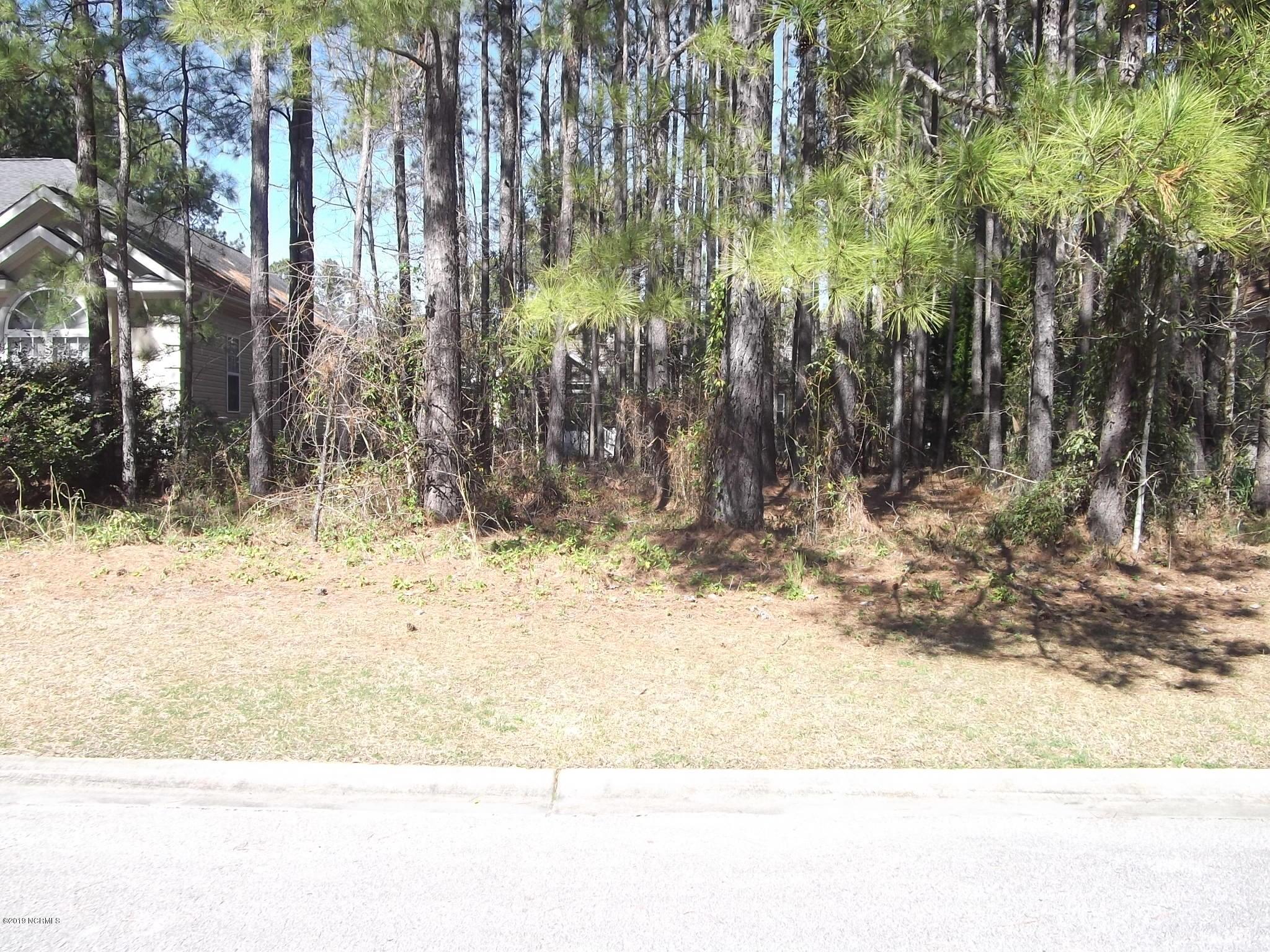 Brunswick Plantation & Golf Resort - MLS Number: 100151862