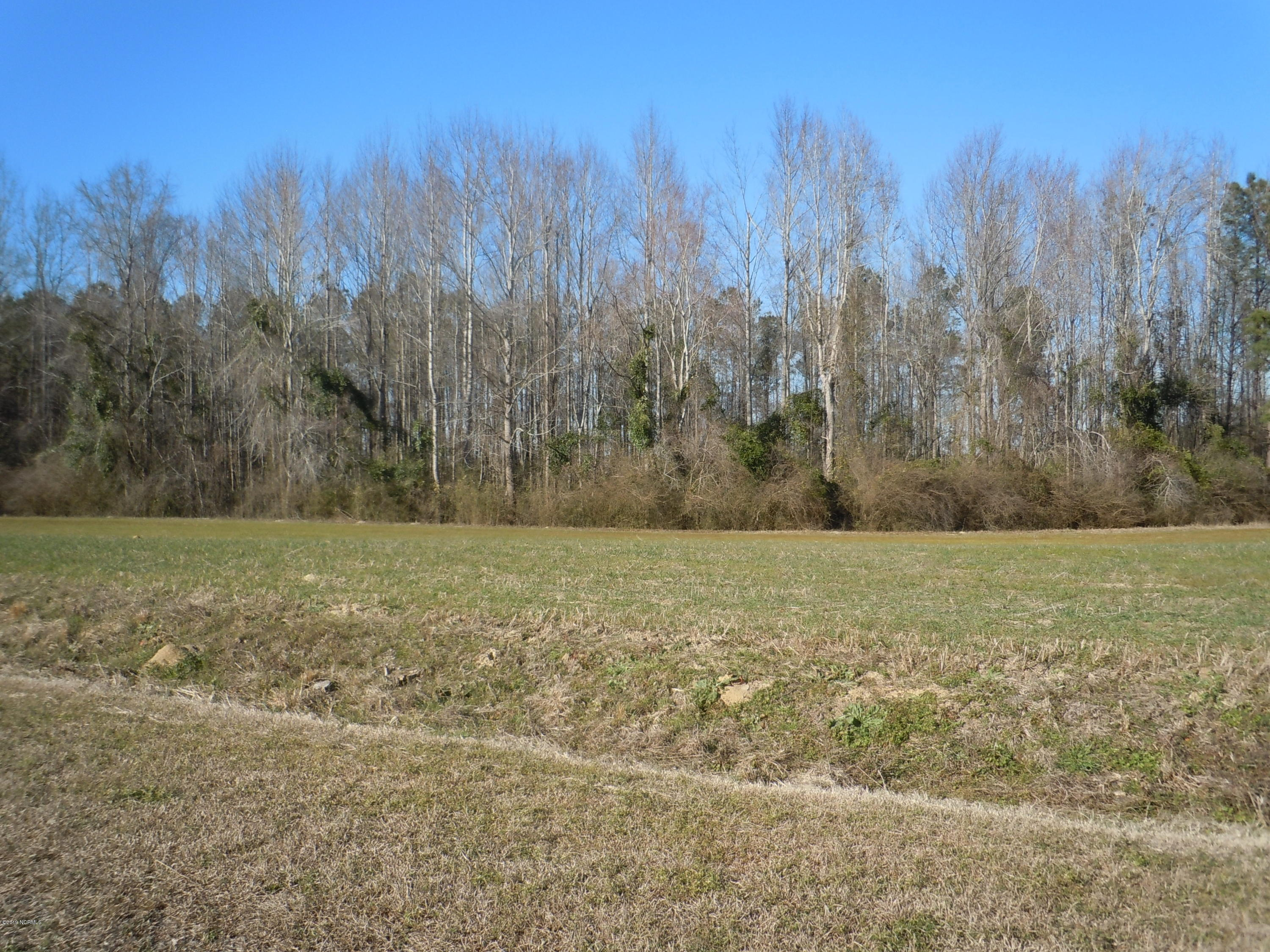 Carolina Plantations Real Estate - MLS Number: 100152057