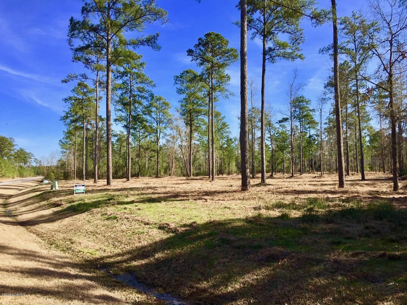 Lot 32 Bailey Pointe Drive- Belhaven- North Carolina, ,Residential land,For sale,Bailey Pointe,100152639