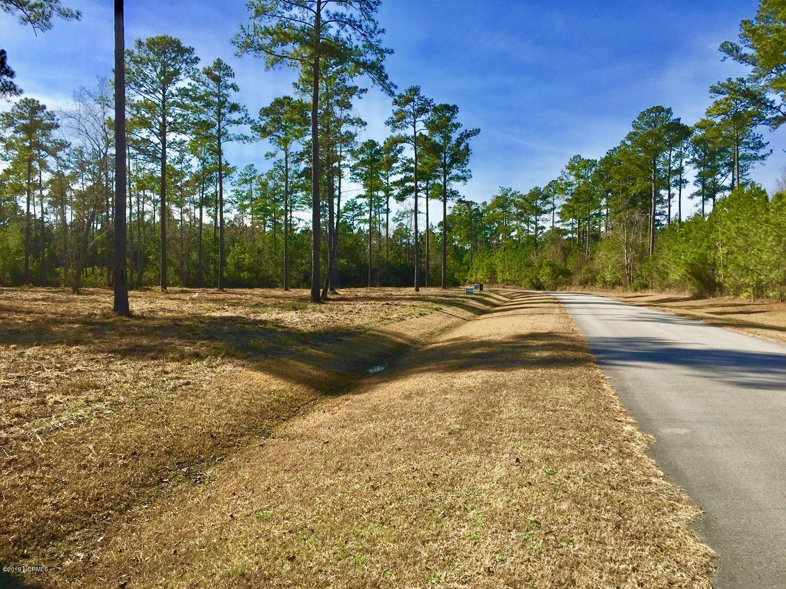 Lot 33 Bailey Pointe Drive, Belhaven, North Carolina, ,Residential land,For sale,Bailey Pointe,100152678