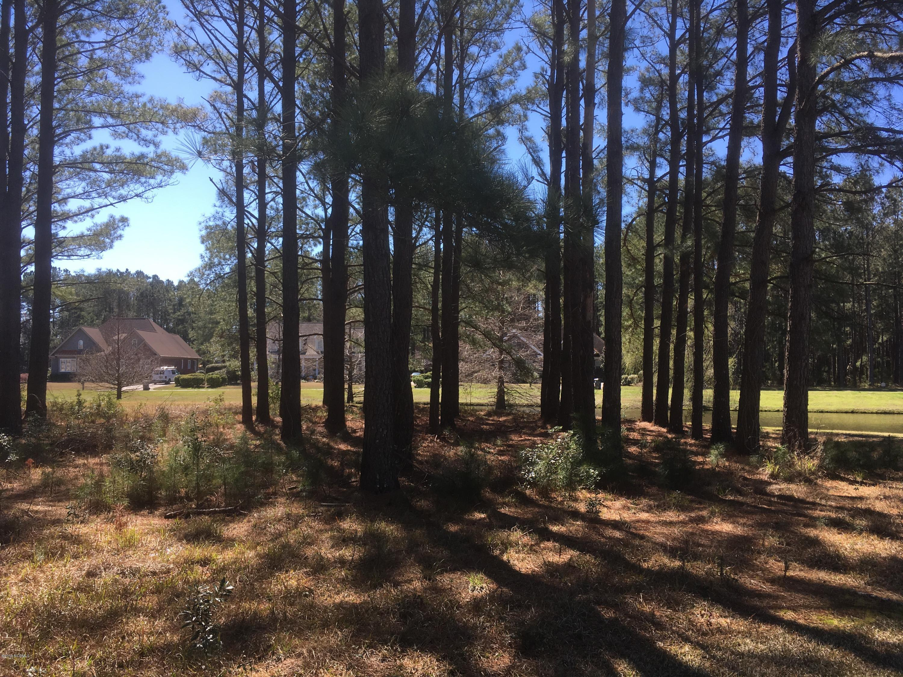 Carolina Plantations Real Estate - MLS Number: 100151656