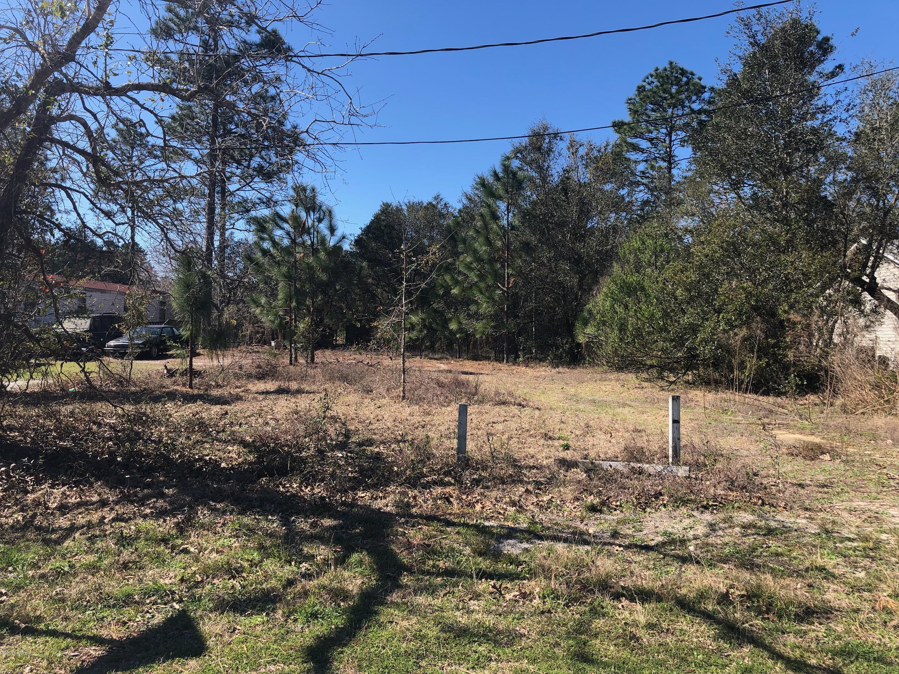 345 Holly Drive, Southport, North Carolina 28461, ,Residential land,For sale,Holly,100153633