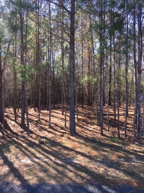 Carolina Plantations Real Estate - MLS Number: 100153873