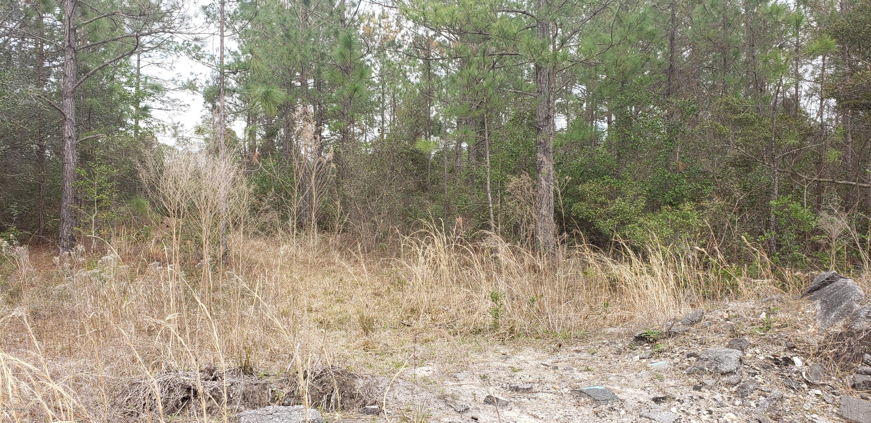 402 Redwood Drive, Southport, North Carolina 28461, ,Residential land,For sale,Redwood,100154016