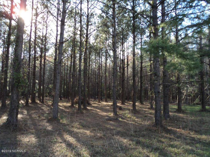 Carolina Plantations Real Estate - MLS Number: 100154155