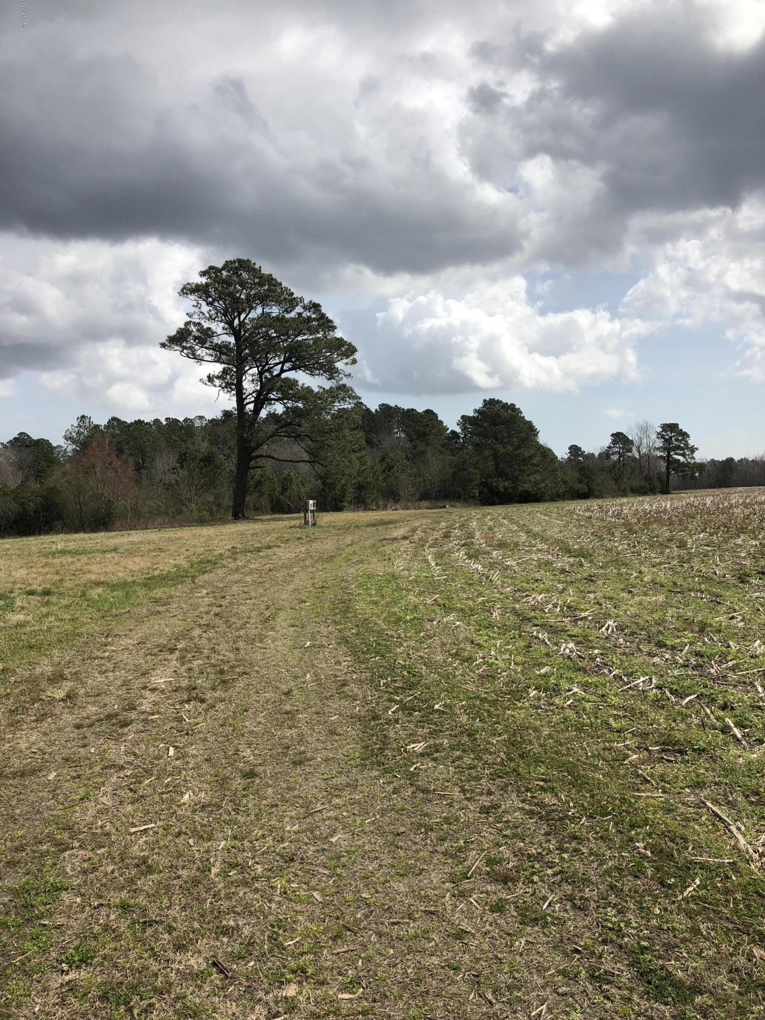 36 Ac Happy Home Church Road, Nakina, North Carolina 28455, ,Farm,For sale,Happy Home Church,100154222