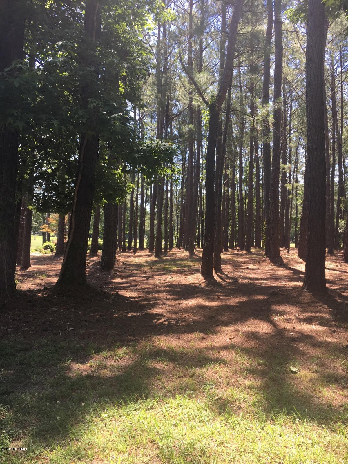 Carolina Plantations Real Estate - MLS Number: 100154761